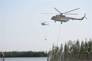 عملیات مهار آتش سوزی در بخش عراقی تالاب هورالعظیم آغاز شد