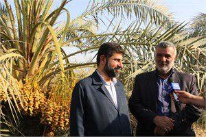 وزیر جهاد کشاورزی: صنایع تبدیلی حلقه مفقوده کشت و صنعت خوزستان هستند