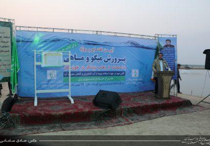 افتتاح پروژه پرورش میگو و ماهی با استفاده از زهاب نیشکر