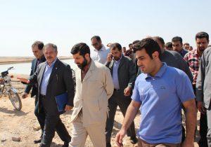 استاندار خوزستان خبر داد: تلاش برای اجرای فاز ۲ طرح پرورش ماهی آزادگان